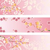 stock photo of cherry-blossom  - This graphic is cherry blossom banner set - JPG