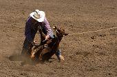 foto of brahma-bull  - Calf roper at 2006 Russian River Rodeo Duncans Mills California - JPG