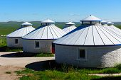 picture of yurt  - Mongolian yurts in the grassland of Hulun Buir League of Inner - JPG