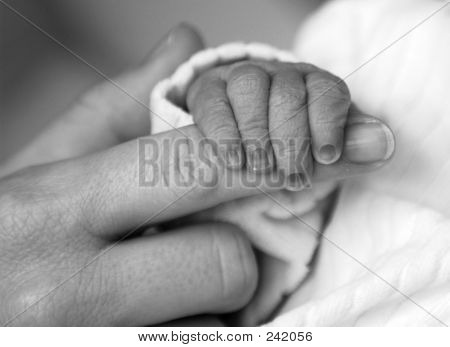 1413 Baby Hand Holding Mother's Finger