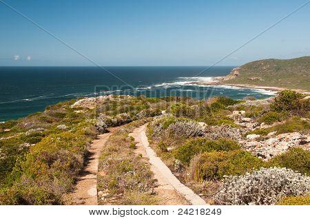 Seaside Trail