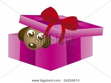 gift box with dog