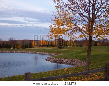 Golf Course Vista