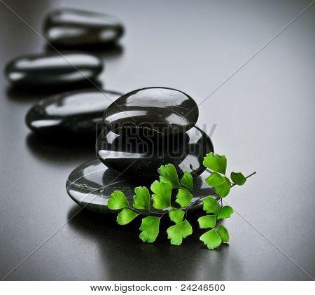 Spa piedras