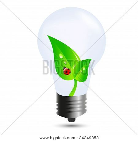 Eco Bulb With Leaves And Ladybug