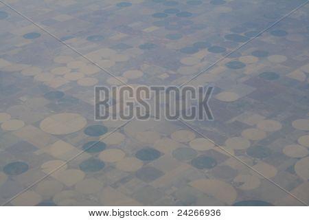 lubbock tx farming field