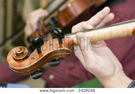 Pegs Of Fiddle
