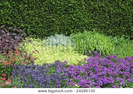 English Flower Beds