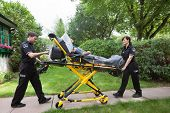 picture of stretcher  - Senior woman on emergency medical stretcher being transported from home - JPG
