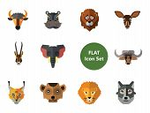 Animal Faces Icon Set. Lion Head Zebra Hippo Head Giraffe Face Lion Face Wolf Elephant Head Antelope poster