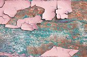 Peeling Paint, Texture Background Of Pink Peeling Paint On The Wooden Texture Surface, Flaked Paint  poster