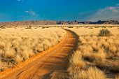 Scenic View Of A Sand Road In Landscape Desert At Sunset. Solitaire, Namibia, Africa. poster