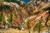 View at a vivid Grand Canyon of the Yellowstone and Yellowstone river seen from Artist Point. Yellow poster