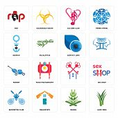 Set Of 16 Simple Editable Icons Such As Aloe Vera, Quran, Realestate, Badminton Club, Sex Shop, Rap, poster