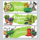 Vector Hand Drawn Gardening Banners With Tools, Flowers, Rubber Boots, Seedling, Tulips, Gardening C poster