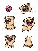 Cartoon Character Pug Dog Poses. Cute Pet Dog In The Flat Style. Set Dogs. Cute Dog Of Pug Breed. Ve poster
