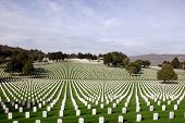 image of world war one  - White Marble Stones At A United States National Cemetery - JPG