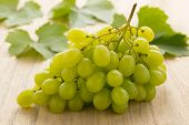 Bunch of fresh green grapes with grape leaves on the background poster