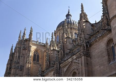 Salamanca New Cathedral (Catedral Nueva)