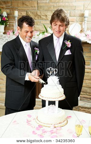 Two handsome grooms cutting their wedding cake.