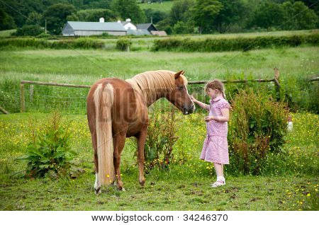 Love between a girl and her pony