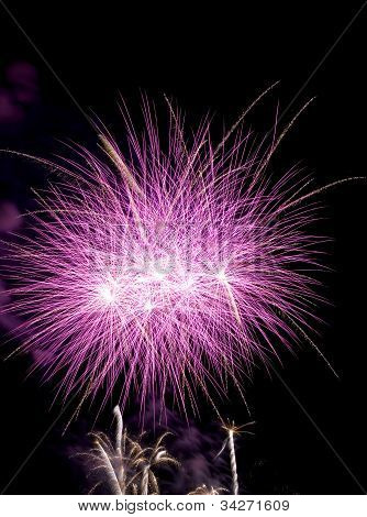 Firework Bursts
