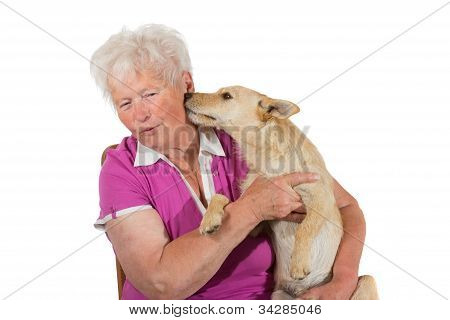 Little Dog Licking His Elderly Owner