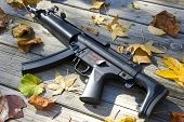 picture of mp5  - Picture of a sub machine gun surrounded by leaves - JPG
