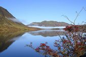 View Across Crummock Water In The Lake District Looking Towards Low Fell. A Bank Of Mist Lies At The poster