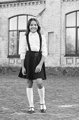 School Fashion. Girl Wear Fashionable Outfit. White Shirt And Black Dress. Classic Style. Formal Clo poster
