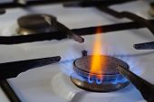 Flames From Burning Gas On A Stove. Among The Blue Flame, One Red Stands Out Brightly. Cooking In Th poster