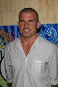 SANTA MONICA, CA - JUL 23: Dominic Purcell Fox Summer TCA Press Tour All Star Party at the Santa Mon