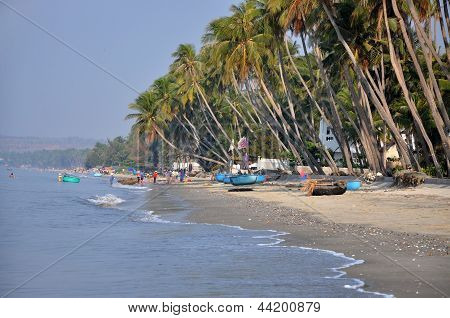 Mui Ne beach with palm trees, Vietnam