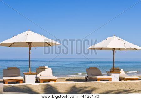 Tumbonas en la playa