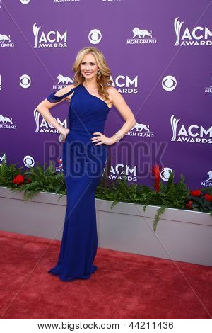 LAS VEGAS - MAR 7:  Ashley Jones arrives at the 2013 Academy of Country Music Awards at the MGM Grand Garden Arena on March 7, 2013 in Las Vegas, NV