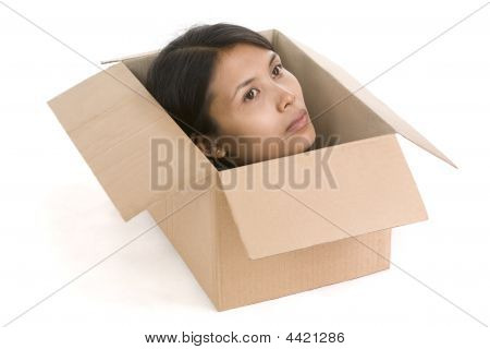 Head In Box Series - Looking
