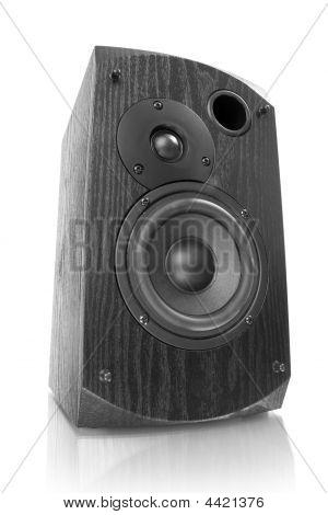 Black Speaker Isolated