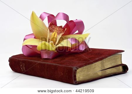 Corsage On Bible