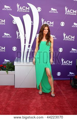 LAS VEGAS - MAR 7:  Michelle Stafford arrives at the 2013 Academy of Country Music Awards at the MGM Grand Garden Arena on March 7, 2013 in Las Vegas, NV