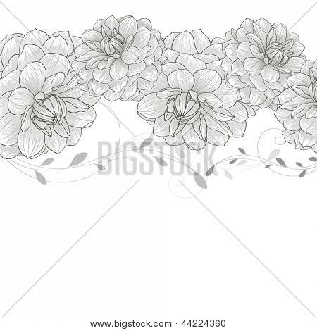 Monochrome floral background with flower dahlia.