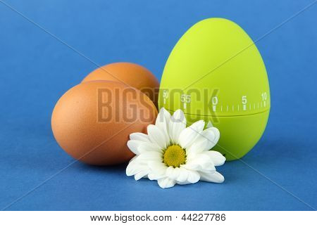 Green egg timer and eggs, on color background