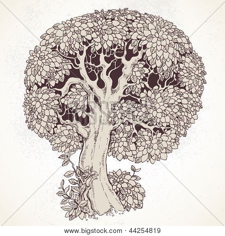 Magic old tree with big magnificent crown on vintage background