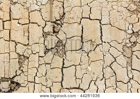 Close Up Of Cracked Soil