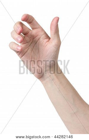 Adult Man Hand To Hold Something