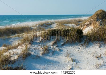sand dunes and the ocean