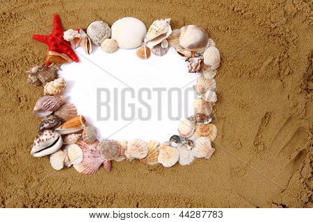 Sea Shells, Paper And Yellow Sand