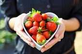 foto of strawberry plant  - strawberry in heart shape bowl with hand - JPG