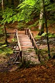 Old wooden bridge in park