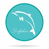 picture of porpoise  - Vector image of an dolphin - JPG