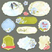 foto of swallow  - Collection of vintage labels with spring flowers and swallows with an empty seat for your text - JPG